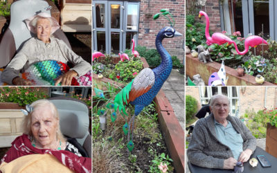 Polly the Peacock lands at Hengist Field Care Home